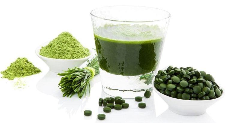 Хлорелла для человека, полезные свойства хлореллы, как правильно использовать хлореллу